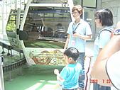 動物園遊20100725:DSC03114.JPG
