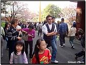 天元宮賞櫻:DSC02889.jpg