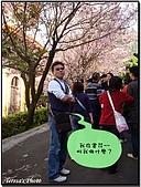 天元宮賞櫻:DSC02892.jpg