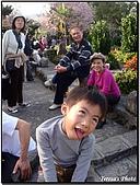 天元宮賞櫻:DSC02948.jpg