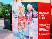 台北華山展+看飛機:2018-03-29-15-43-50.jpg