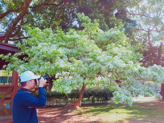 2018-03-29-08-07-17.jpg - 2018林口大湖公園紫藤花季