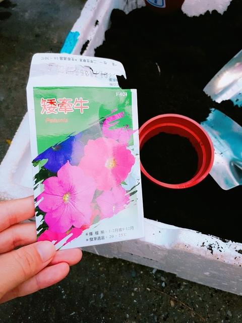 2017-09-23-16-34-20.jpg - 平溪天燈媒人進站