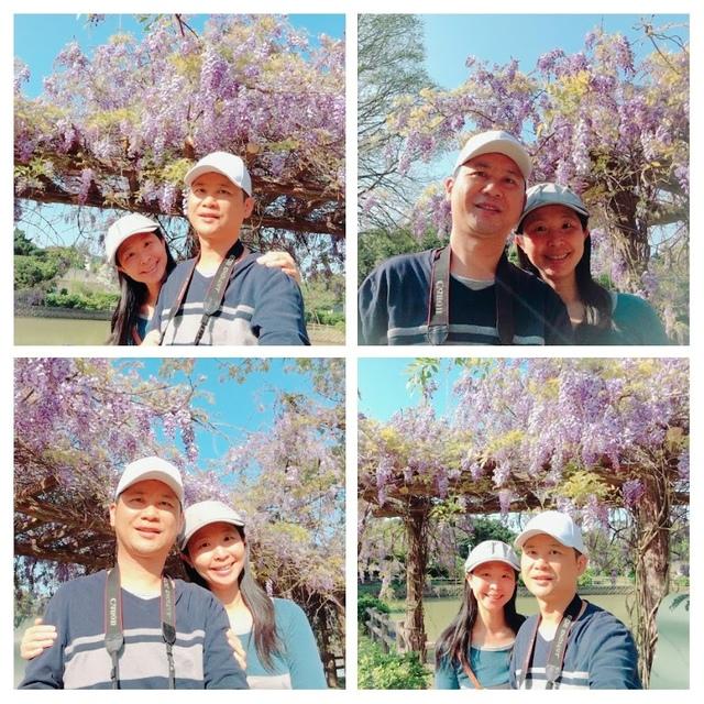 20180329_090538-COLLAGE.jpg - 2018林口大湖公園紫藤花季