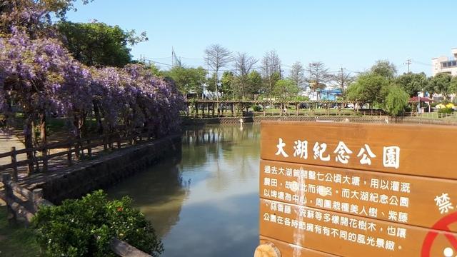 20180329_082622.jpg - 2018林口大湖公園紫藤花季