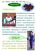 2006年3月無限日誌:[無限綠帽隊] PART II