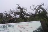 2003/06/20-22~雪山主東下翠池:雪山主東峰_115.JPG