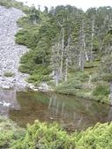2003/06/20-22~雪山主東下翠池:雪山主東峰_671.JPG