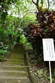 2021/01/02~圓山水神社上劍潭山及老地方:DAC_0390.jpg