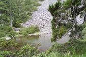 2003/06/20-22~雪山主東下翠池:雪山主東峰_210.JPG