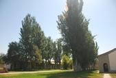 2012-08-19 北疆9:N XinJiang-4938