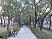 971220我在仁愛路公園:往新生南路方向右邊的公園
