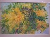 1080712 花卉水彩大展:DSC_6334.JPG