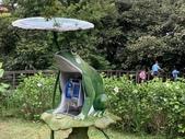 1090510 植物園賞荷趣:IMG_6801.JPG
