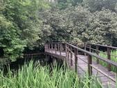 1090510 植物園賞荷趣:IMG_6807.JPG