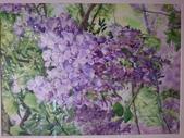 1080712 花卉水彩大展:DSC_6332.JPG