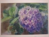 1080712 花卉水彩大展:DSC_6315.JPG