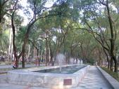 971220我在仁愛路公園:公園裡的噴水池