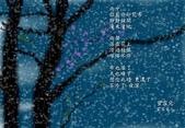未分類相簿:花雨.jpg