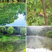 汐止  玉泉宮附近  清晨的小湖:相簿封面