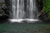 仁山植物園  新寮瀑布:仁山植物園  新寮瀑布