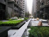 世紀凱悅高樓2房+車位:10.jpg
