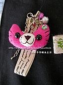 口愛~動物髮飾與胸針:DSCN9005_01.jpg