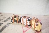 娃用手工行李箱:DSC_8237-01.jpg