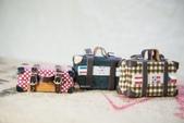 娃用手工行李箱:DSC_8246-01.jpg