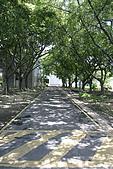 2009.07.04 北台灣大縱走:IMG_4689.JPG