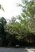 2009.07.04 北台灣大縱走:IMG_4765.JPG