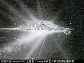 UFO:宇宙天國世界.jpg