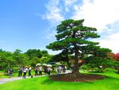 2020.05.30彰化成美園區:IMG_3824.JPG