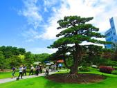 2020.05.30彰化成美園區:IMG_3823.JPG