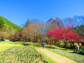 2019.02.01福壽山農場:IMG_0772.JPG