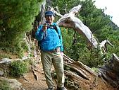 2006.11.22嘉明湖:嘉明湖步道
