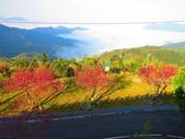 2020.02.08石山引水道步道:IMG_3095.JPG