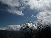 2011.02.18櫻花密境-武陵農場:DSCF0807.JPG