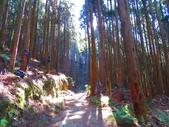 2020.02.08石山引水道步道:IMG_3101.JPG