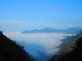 2020.02.08石山引水道步道:IMG_3089.JPG