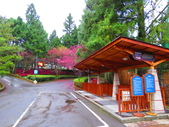2019.03.09九族文化村櫻花祭:IMG_1210.JPG