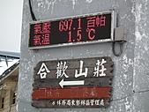 2011.02.18櫻花密境-武陵農場:DSCF0775.JPG