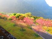 2020.02.08石山引水道步道:IMG_3094.JPG