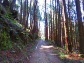 2020.02.08石山引水道步道:IMG_3103.JPG