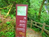 2015.10.24嘉義瑞峰竹坑溪步道:IMG_2443.JPG