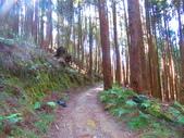 2020.02.08石山引水道步道:IMG_3102.JPG