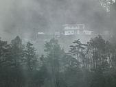 2011.02.18櫻花密境-武陵農場:DSCF0984.JPG