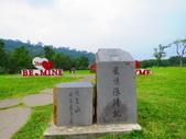 2015.09.26阿里山對高岳步道:IMG_1840.JPG