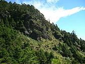 2006.11.22嘉明湖:向陽山沿路風景