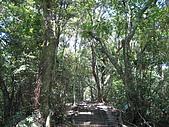 2007.09.01太平山之旅:棲蘭森林遊樂區步道jpg